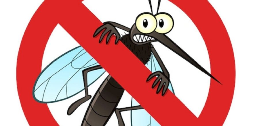 6 Natural Ways To Keep Mosquitoes Away How To Hinglish Guide 2019